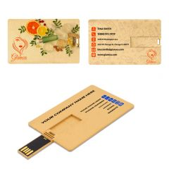 USB Business Card Recycled Plastic